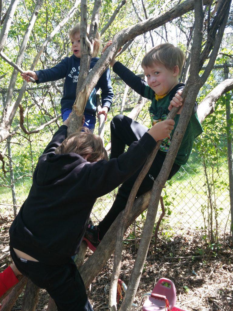 Kids climbing and playing